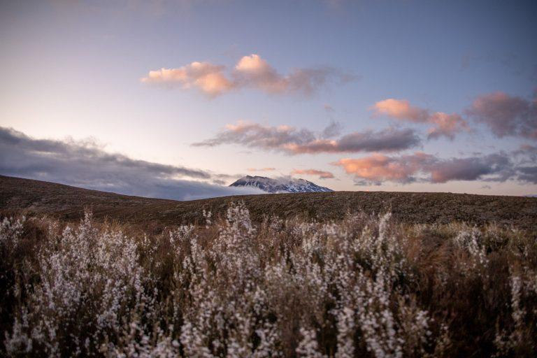 Neuseeland Reiseblog mit dem camper durch neuseeland